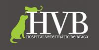 hvb.png