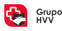 logogrupohvv.png