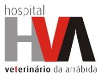 HVA_2.jpg